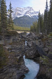 Scenic landscapes in Jasper National Park, Alberta, Canada Royalty Free Stock Photo