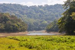 Scenic landscapes and waterscapes of Periyar National Park, Kerala, India. This amazing wildlife park is located in Kerala southern state of India. Sprawled royalty free stock image