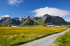 Scenic Lofoten Royalty Free Stock Photo