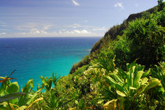 Scenic lookout in Hawaii royalty free stock image