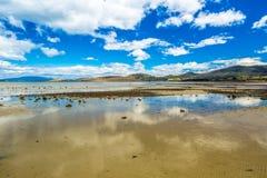 Low tide at Dunalley Tasmania Royalty Free Stock Photo
