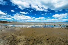Low tide Tasmania Royalty Free Stock Photo