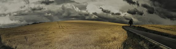 Scenic magical landscape with frightening atmosphere. Dark dramatic clouds, asphalt road,agriculture field,solitary tree, summer .Creative post processing royalty free stock photos