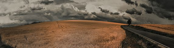 Scenic magical landscape with frightening atmosphere. Dark dramatic clouds, asphalt road,agriculture field,solitary tree, summer .Creative post processing stock image