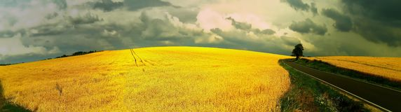 Scenic magical landscape with frightening atmosphere. Dark dramatic clouds, asphalt road,agriculture field,solitary tree, summer .Creative post processing royalty free stock photo