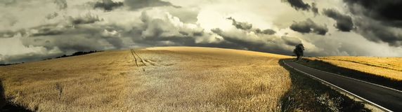 Scenic magical landscape with frightening atmosphere. Dark dramatic clouds, asphalt road,agriculture field,solitary tree, summer .Creative post processing royalty free stock photography