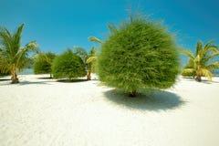 Scenic Malibu beach on Koh Phangan, Thailand Royalty Free Stock Photography