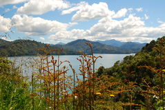 Scenic Marlborough Sounds Stock Image