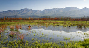 Scenic Marsh Water Panoramic Mountain Landscape Outback Alaska Stock Photography
