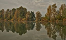 Scenic marshland during autumn time royalty free stock images