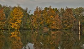 Scenic marshland during autumn time stock photo