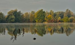 Scenic marshland during autumn time royalty free stock photos