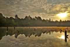 Scenic marshland during autumn time stock image