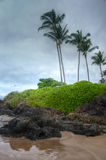 Scenic Maui Shoreline Stock Photography