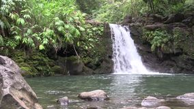 Scenic Maui Waterfall. A scenic waterfall along the road to Hana on the island of Maui stock video footage