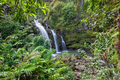 Scenic Maui Waterfall Stock Image