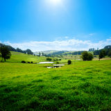 Scenic Meadow Royalty Free Stock Image