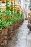 Scenic medieval style outdoor terrace with plants Royalty Free Stock Photos