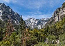 Scenic Mist Falls trail at Kings Canyon CA stock images