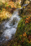 Scenic mountain autumn landscape with river and   waterfalls, P Royalty Free Stock Photos