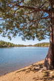 Scenic Mountain Lake Royalty Free Stock Photography