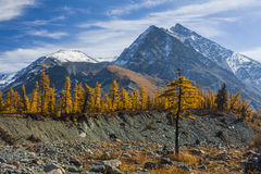 Scenic mountain landscape in the autumn. Royalty Free Stock Photo