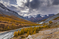 Scenic mountain landscape in the autumn. Stock Images
