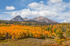 Scenic Mountain Landscape in Autumn Stock Images