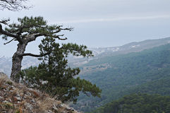 Scenic mountain landscape in the Crimea Royalty Free Stock Images