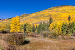 Scenic Mountain Landscape in Fall Royalty Free Stock Photos
