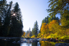 Scenic mountain river landscaping in autumn of year Stock Image