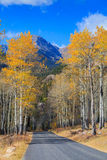 Scenic Mountain Road in Fall Stock Photography