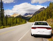 Scenic Mountain Road, Icefield Parkway, Canadian Rockies royalty free stock images