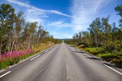Scenic mountain road in Telemark Southern Norway Royalty Free Stock Image