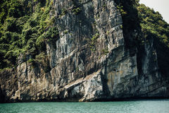 Scenic mountain rock face cliff in the sea water, green trees, a. Sia ha long bay vietnam royalty free stock photo