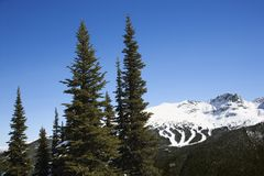 Scenic of mountain ski trails. Stock Photography