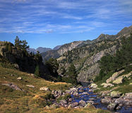 Scenic mountain stream Stock Photography