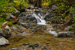 Scenic mountain stream Royalty Free Stock Image