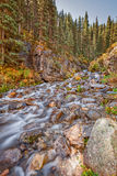 Scenic Mountain Stream in Autumn Royalty Free Stock Photography
