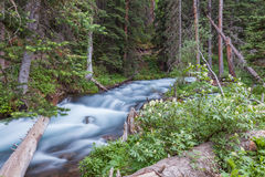 Scenic Mountain Stream Stock Photography