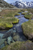 Scenic mountain stream in the Italian alps Royalty Free Stock Photography