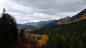 Scenic mountain view with autumn trees stock video footage