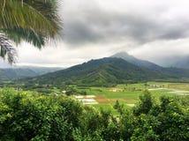 Scenic mountain view on the Big Island of Hawaii Stock Photo