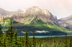 Scenic mountain view near Icefields parkway, Canadian Rockies Stock Images