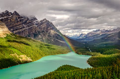 Scenic mountain view of Peyto lake valley, Canadian Rockies Royalty Free Stock Photography