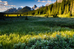 Scenic Mountain Views Stock Images