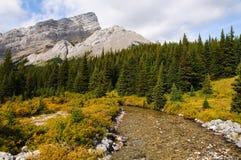 Scenic Mountain Views Stock Photography