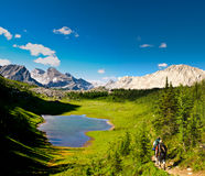 Scenic Mountain Views Kananaskis Country Alberta Canada Stock Image