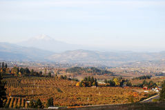 Scenic Mt. Hood. Scenic view of Mt. Hood and orchards in Hood River, Oregon.  Taken in the fall Stock Photos