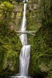 Scenic Multnomah Falls in Oregon royalty free stock photo